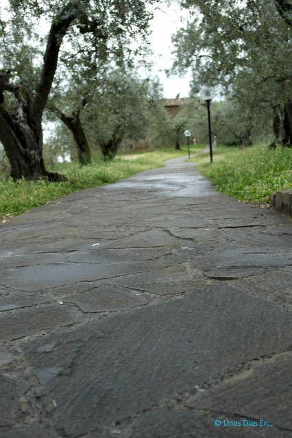 The road to Leonardo's birth house